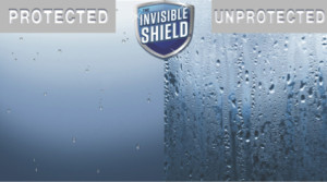 Shower Door Protective Shield
